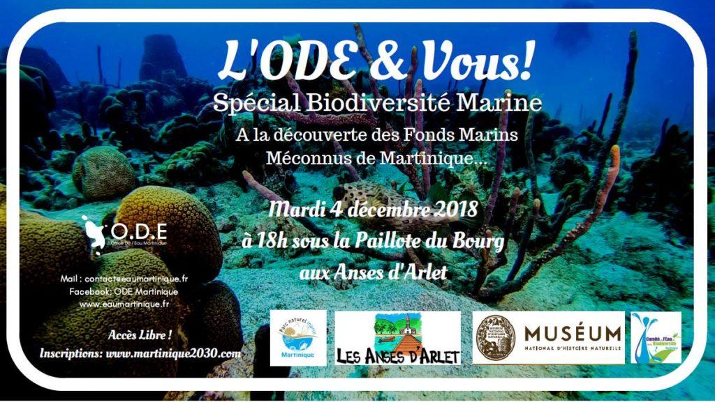 A la découverte des fonds marins méconnus de la Martinique